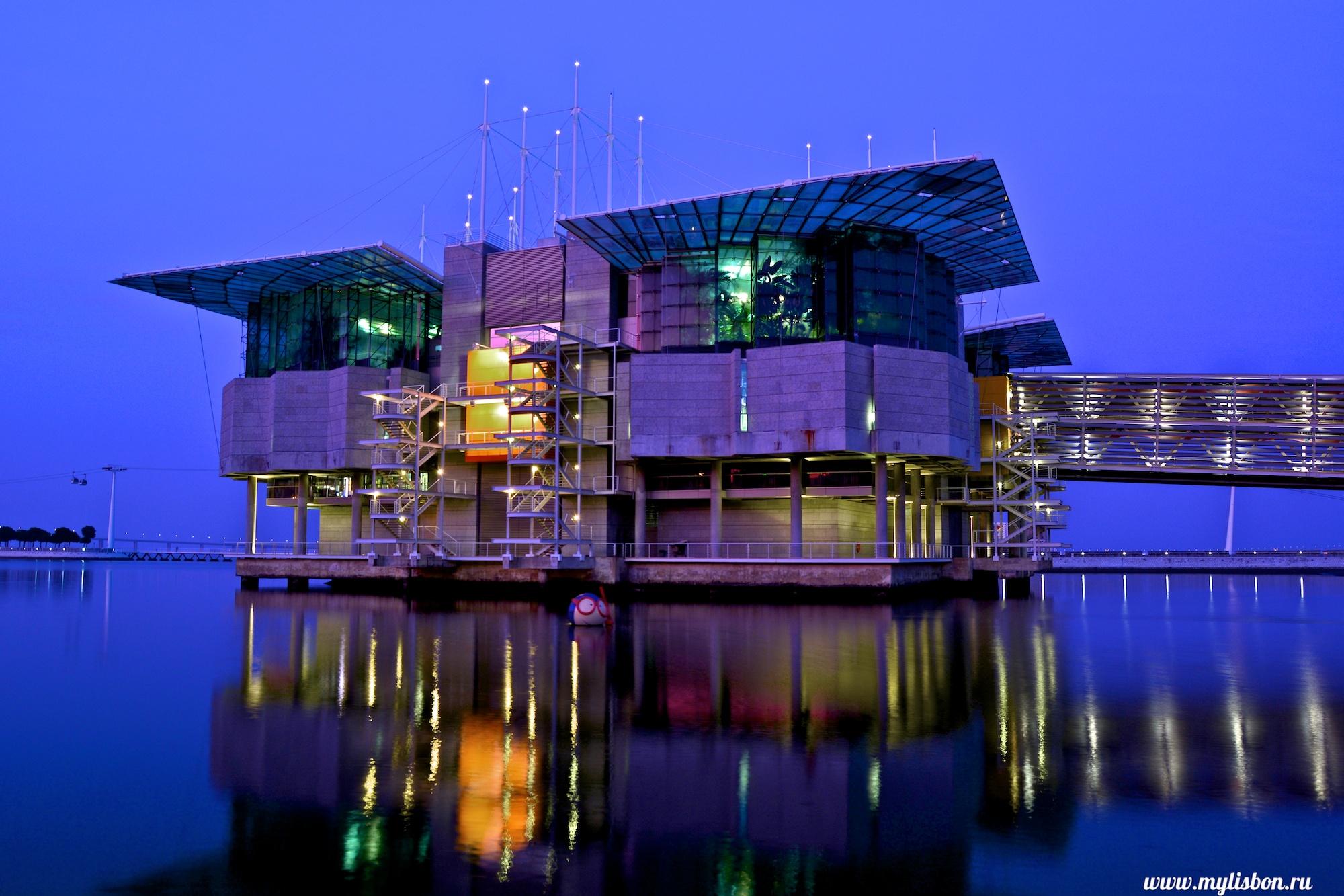 Oceanorium de Lisbonne - Photo flickr de Pavel Arzhakov